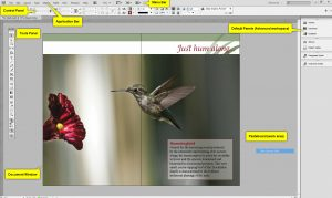 18. Edición textos InDesign
